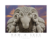 Horns Framed Prints Posters Prints - Ram A Sees Naturally Stoned Poster Print by David Davies