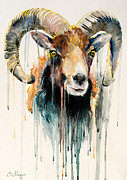 Animal Mixed Media Metal Prints - Ram  Metal Print by Slaveika Aladjova