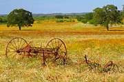 Texas Wild Flowers Posters - Ranch and Old Farm Implement and Wildflowers Poster by Andrew McInnes