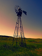 Wind Vane Photos - Ranch Dusk by Daniel Hagerman