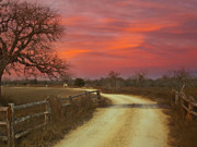 James R Granberry Posters - Ranch Under a Blazing Sky Poster by James Granberry