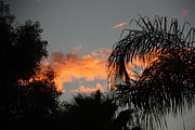 Sherri  Of Palm Springs - Rancho Mirage Evening...