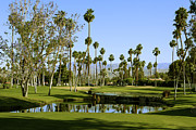 Nina Prommer Prints - Rancho Mirage Golf Course Print by Nina Prommer