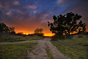 California Beach Photos - Rancho Santa Fe Sunset by Larry Marshall