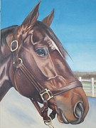 Equestrian Glass Art Prints - Ranger Commission Print by Steve Messenger