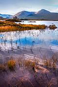 Jenny Rainbow - Rannoch Moor 1. Scotland