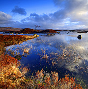 Printed Prints - Rannoch Moor Lochan Print by Craig Brown