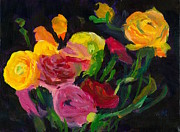 Ranunculus Paintings - Ranunculus by Amantha Tsaros