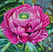Ranunculus Paintings - Ranunculus by Annie Pierson
