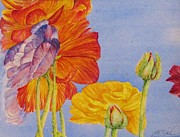 Flower Field Paintings - Ranunculus Heaven by Beth Fischer