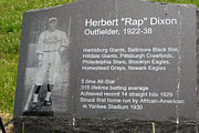 Negro League Prints - Rap Dixon Print by Paul W Faust -  Impressions of Light