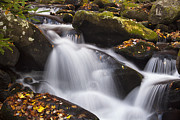 Waterfall Prints - Rapids at Autumn Print by Andrew Soundarajan