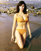 Welch Framed Prints - Raquel Welch Framed Print by Silver Screen