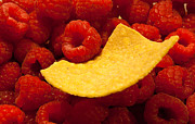 Tortillas Photos - Raspberry Tortilla by Peter Harris