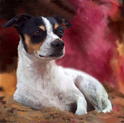 Dog Art Paintings - Rat Terrier Dog Portrait by Enzie Shahmiri