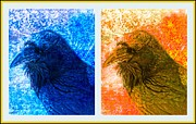 Textured Bird Posters - Raven Collage Poster by Susanne Van Hulst