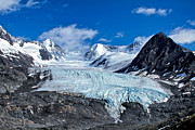 Raven Photos - Raven Glacier 2 by Ed Boudreau