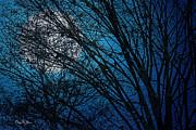 Barry Jones - Raven Moon