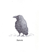 Ghost Story Prints - Raven Print by Myron Gilbert