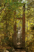 Footpath Prints - Ravine Gardens State Park in Palatka FL Print by Christine Till