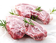 Protein Prints - Raw lamb chops Print by Elena Elisseeva
