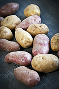 Fresh Food Photo Posters - Raw potatoes Poster by Elena Elisseeva
