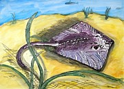 Waterlife Prints - Ray Print by Randolph Gatling