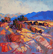Erin Hanson - Rays of Borrego
