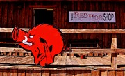 Red Hog Prints - Razorback Country Print by Benjamin Yeager