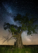 Aaron J Groen - Reach for the Stars