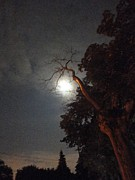 Guy Ricketts Photography Prints - Reaching for the Moon Print by Guy Ricketts