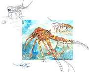 Mini Mixed Media Prints - Reaching Lobster Print by Amber M  Moran