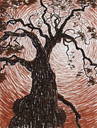 Oak Drawings Prints - Reaching Out Print by Philip Tolok