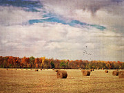Hay Bales Framed Prints - Ready For Winter Framed Print by Pamela Baker