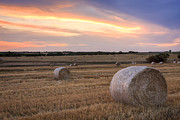 Haybale Photo Prints - Ready to Go Print by Scott Bean