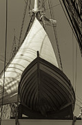 Triangle Art - Ready to Save Black and White Sepia by Scott Campbell
