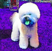 Puppies Digital Art - Real Stuffed Dog by Kathy Budd