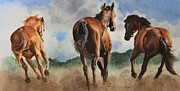Quarter Horses Posters - Rear View Poster by Kimberly Meuse