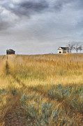 Sandra Cunningham - Old farmhouse on the hill/ digital painting