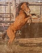 Action Pyrography - Rearing Horse by Fred Haskell