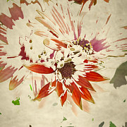 Transitional Prints - Reconstructed Flower #5 Print by Bonnie Bruno