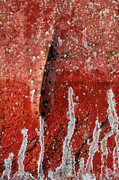 Free Form Photos - Red Abstraction 1 by Tom Druin