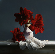 Red Flowers Art - Red Amaryllis Flowers  by Larry Preston