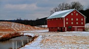 Red Amish Barn In Winter Print by Dan Sproul
