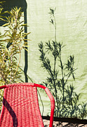 Complimentary Prints - Red and green - chair wall and shadow of a plant Print by Matthias Hauser