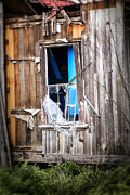 Abandoned House Photos - Red and White and Blue by Caitlyn  Grasso