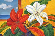 Red And White Lillies Print by Paul Brent