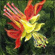 Regina Valluzzi - red and yellow columbine handpainted 3 by 3 inch miniature