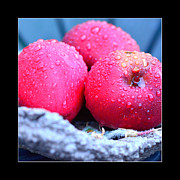 Ripe Originals - Red apples in a barrel by Tommy Hammarsten