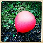 Hipstamatic Framed Prints - Red balloon lying on green grass Framed Print by Matthias Hauser